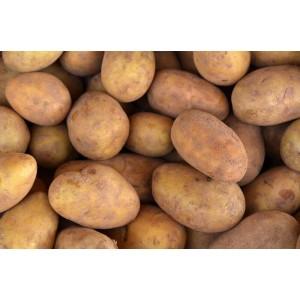 Картофи - цена за 1кг.
