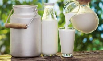 Различните видове млека и техните характеристики