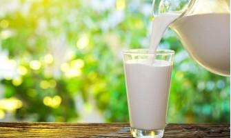 Млякото - основа за нашето здраве и наш приятел. Какви са ползите и за кого е вредно?