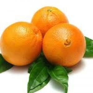 Портокали - цена за 1кг.